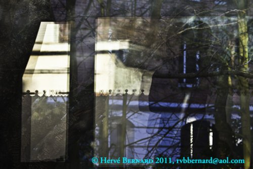 Reflet ou transparence ? photo Hervé Bernard 2011